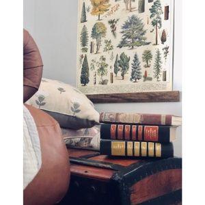 Set of Three Vintage Decorative Fall Books